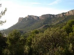 Área forestal de Castalla